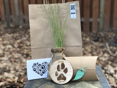 biodegradable package